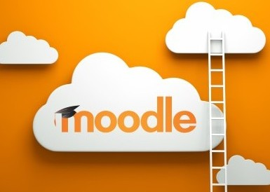 moodle-ladders (Mobile)
